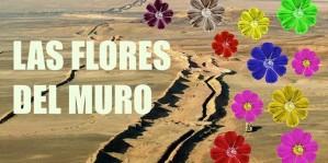 flores-del-muro-thumb